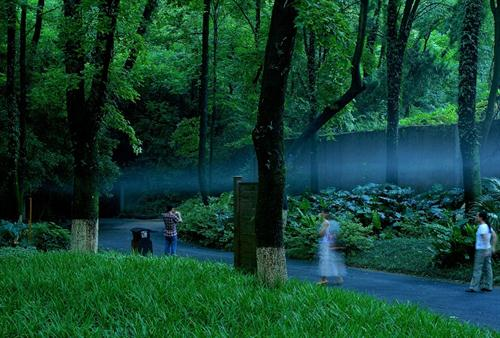 Amazing Mist in Guilin Seven Star Park
