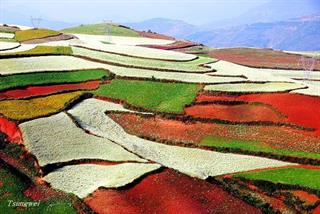 7 Days Kunming Red Land, Lijiang & Shangri-La Tour