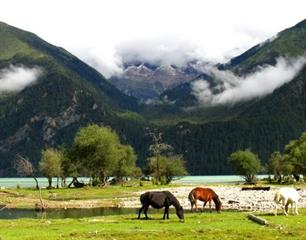 10 Days Chengdu and Tibet Tour