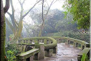 Half Day Chongqing Highlights Tour--Erling Park,Chongqing Zoo & Ciqikou Ancient Town Tour