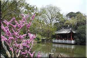 Half Day Suzhou Highlights Tour--Humble Administrator´s Garden & Tiger Hill