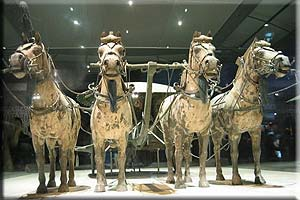 Half Day Private Xian City Tour--Terra-cotta Warriors and Horses