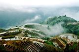 1 Day Guilin To Longsheng Longji Rice Terrace Field Tour