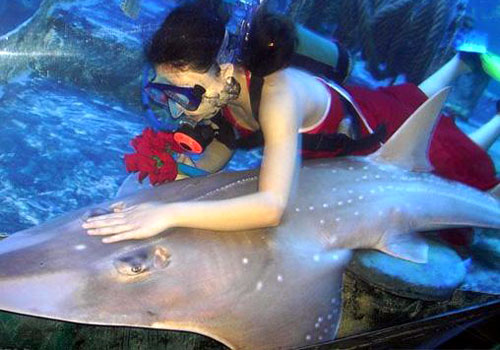 Beihai Underwater World 1