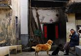 Happy local people and his pets in Chengkan Village
